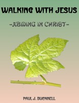 Abiding in Christ: Walking with Jesus