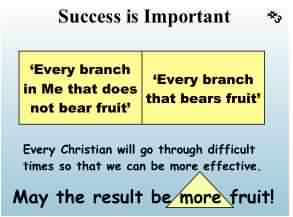 Success is important so God makes all His people bear more fruit.
