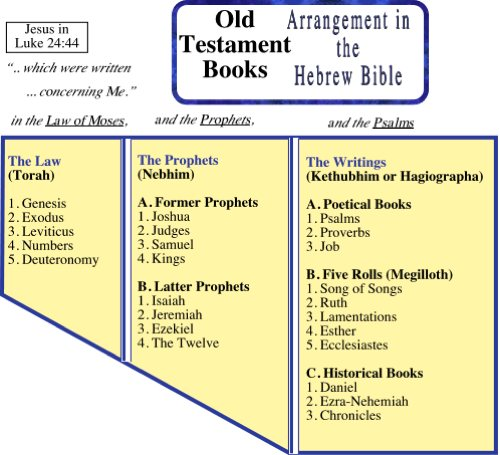 Old Testament Ot Bible Book Order And Charts Living