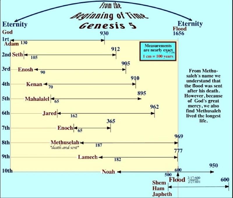 diagram of genesis genealogies