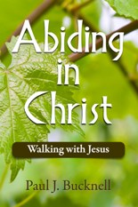 Buy the book Abiding in Christ